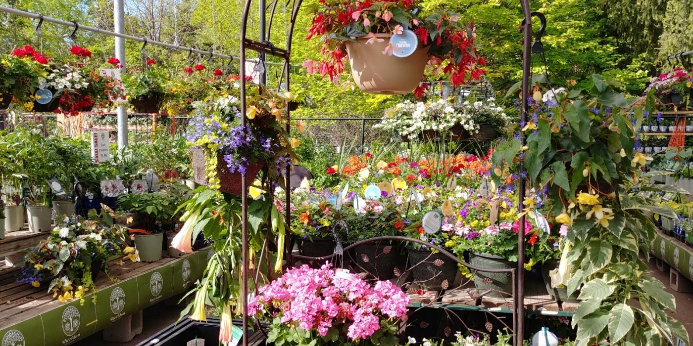 花圃_图1-16