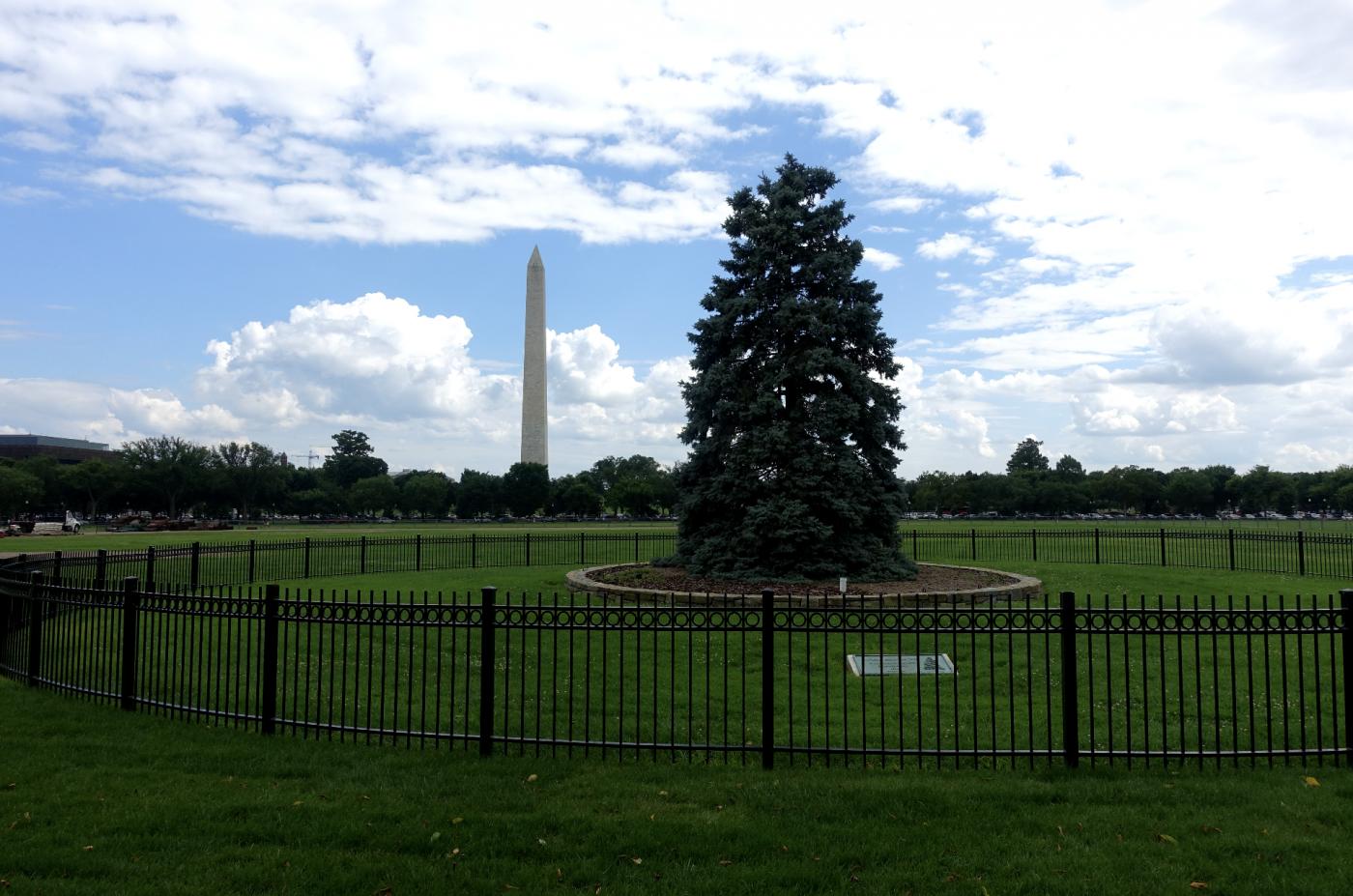 20年后重游美国首都华盛顿有感_图1-10