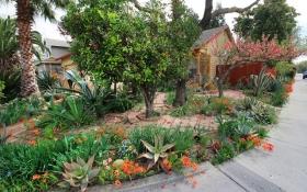 玛塔家庭旅馆花园