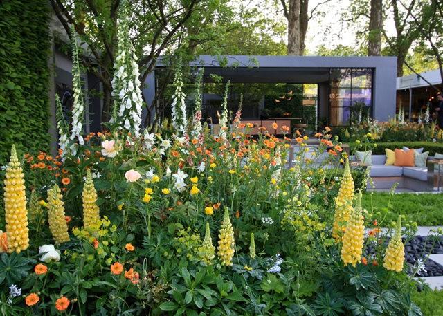 Sarills Garden & 日本庭园_图1-6