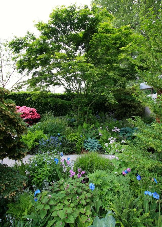 Sarills Garden & 日本庭园_图1-13