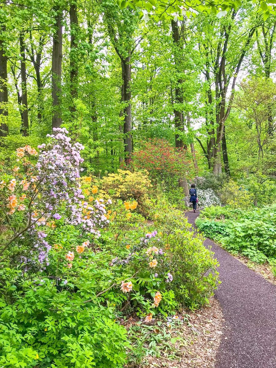 公园漫步,跟着感觉走_图1-3
