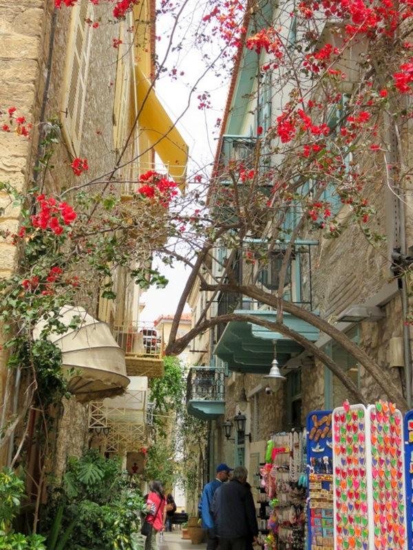 纳天普利--沐浴在花的城镇(希腊)_图1-3
