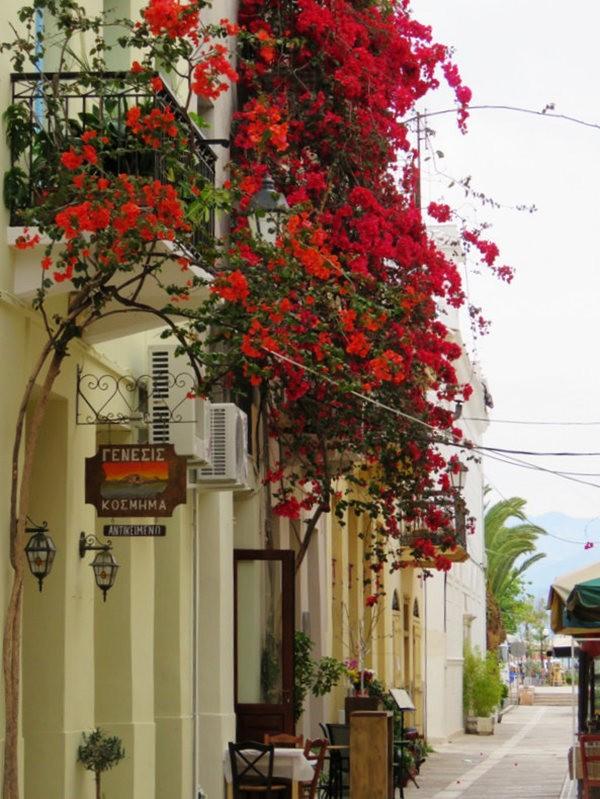 纳天普利--沐浴在花的城镇(希腊)_图1-4