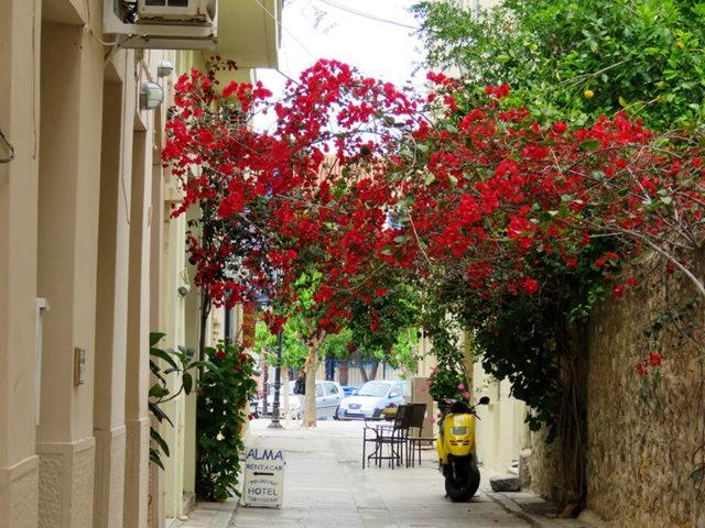 纳天普利--沐浴在花的城镇(希腊)_图1-7