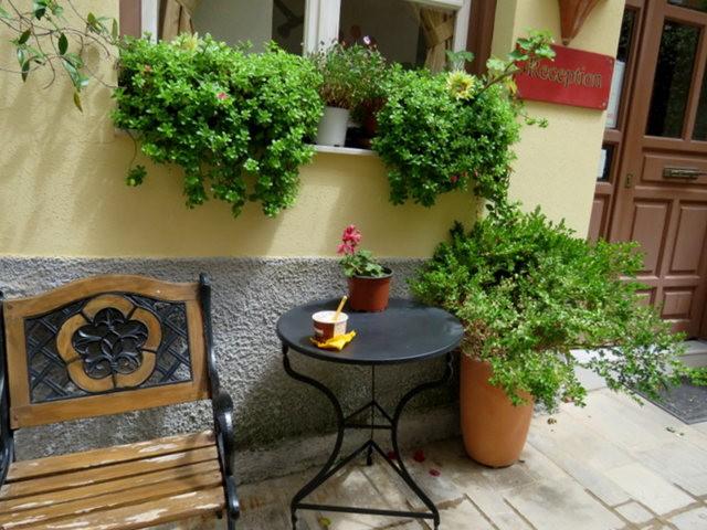 纳天普利--沐浴在花的城镇(希腊)_图1-16