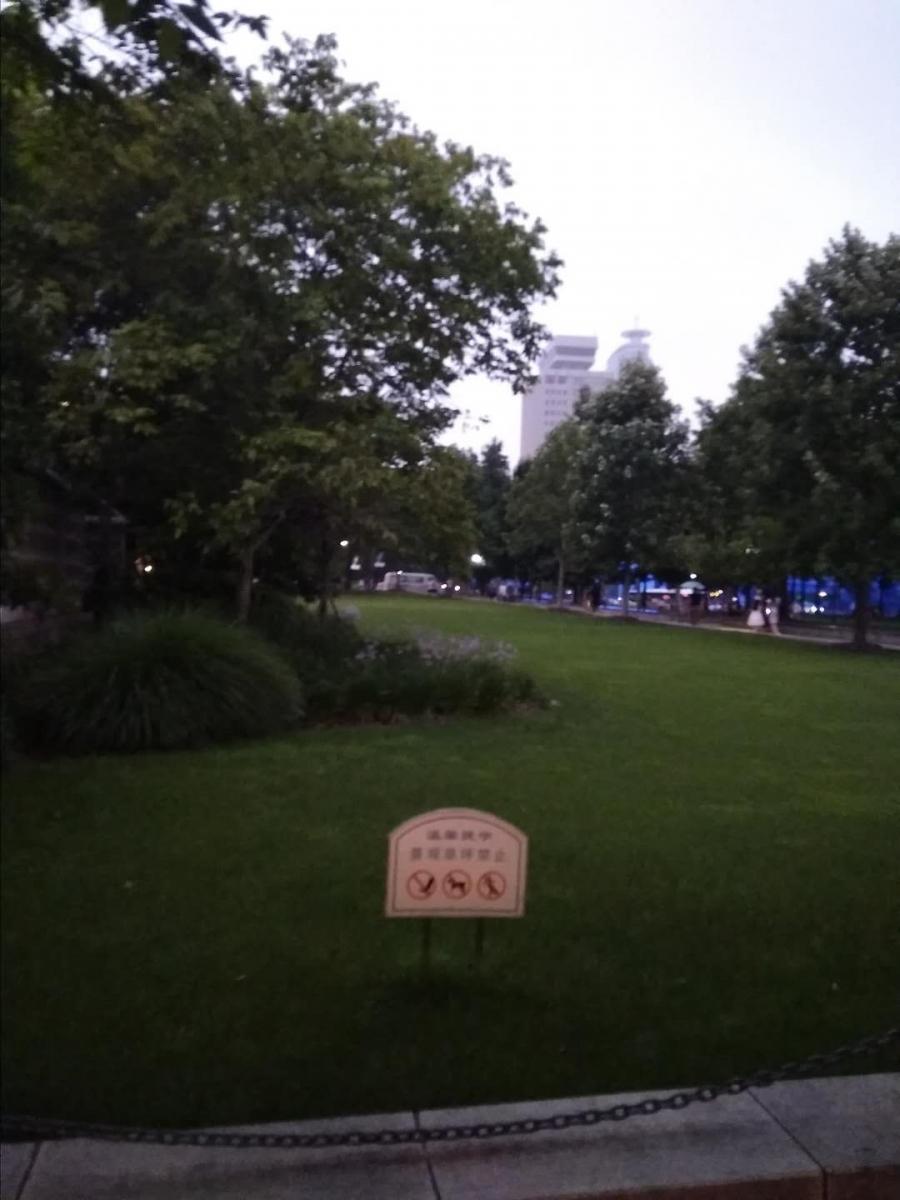 上海城市草坪音乐会:古筝与锁呐_图1-3