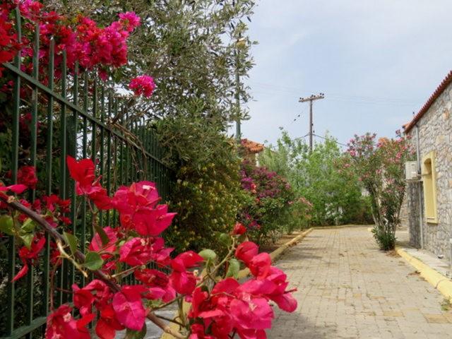 阿雷奥波利--石造的小镇(希腊)_图1-3
