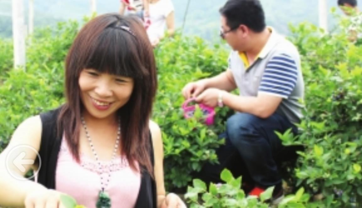 蓝莓盛宴_图1-4