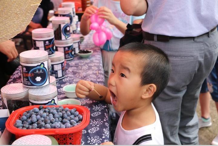 蓝莓盛宴_图1-7