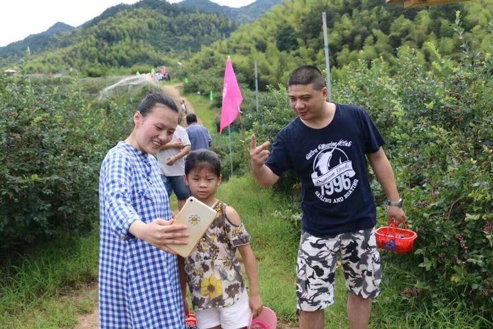 蓝莓盛宴_图1-10