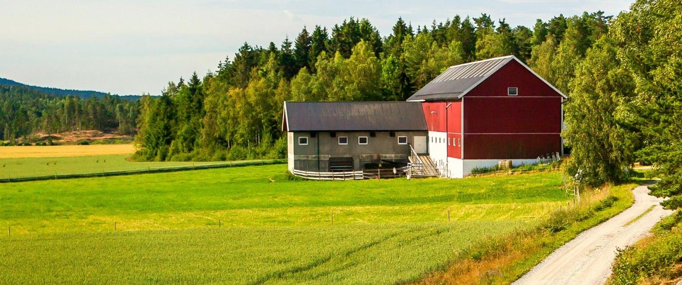 北欧旅途,我的家园我的梦_图1-10