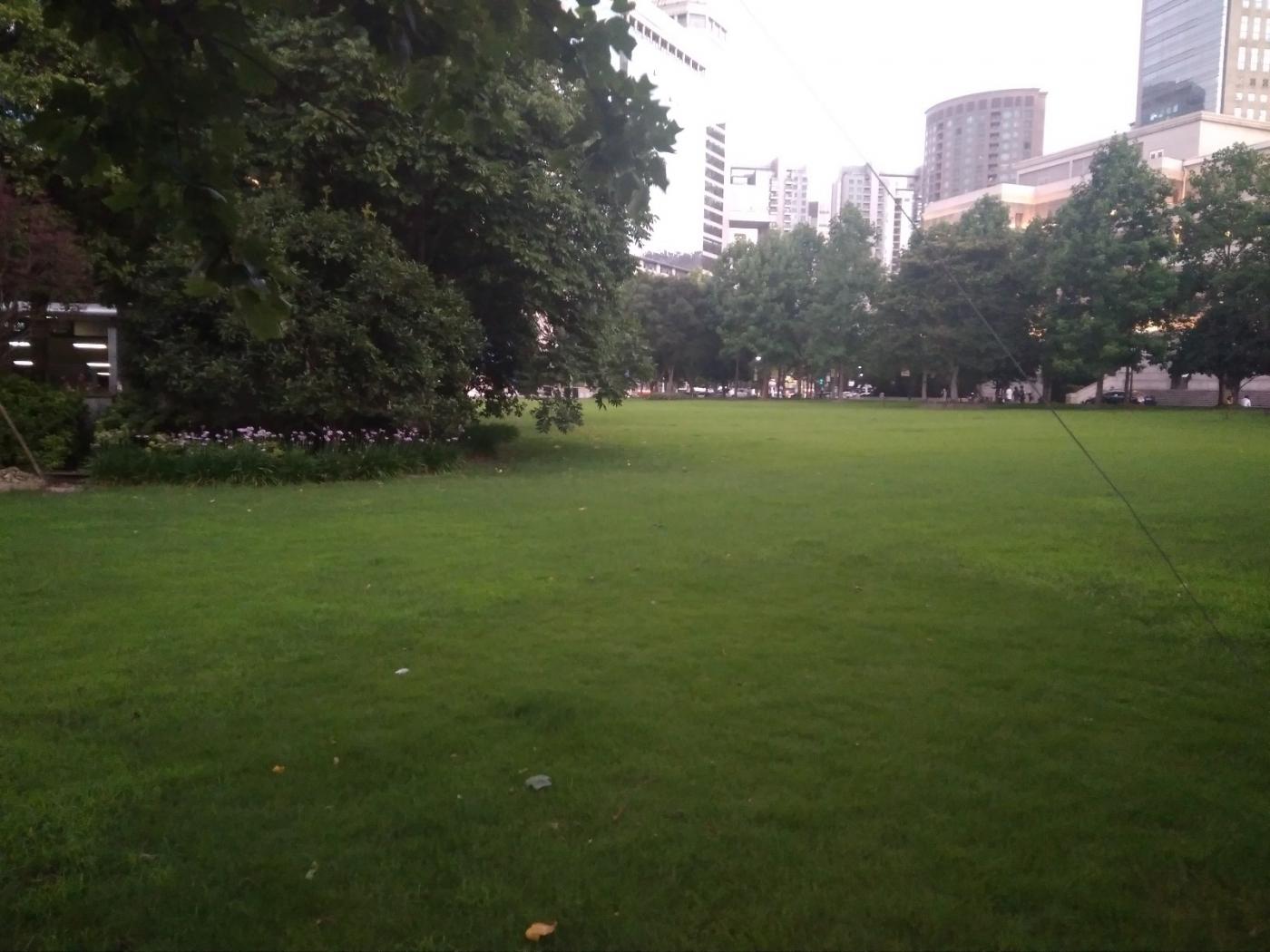 上海城市草坪音乐会:大不列颠乐团_图1-3