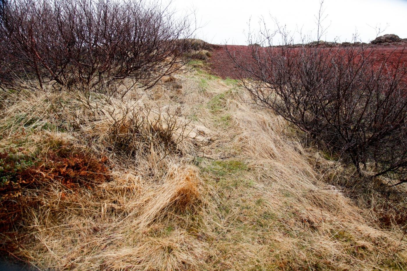 冰岛热带温泉美景,游客流连忘返_图1-9
