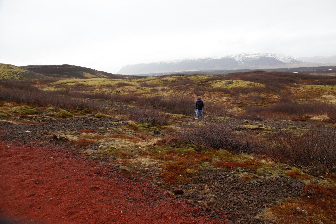 冰岛异国风情_图1-16