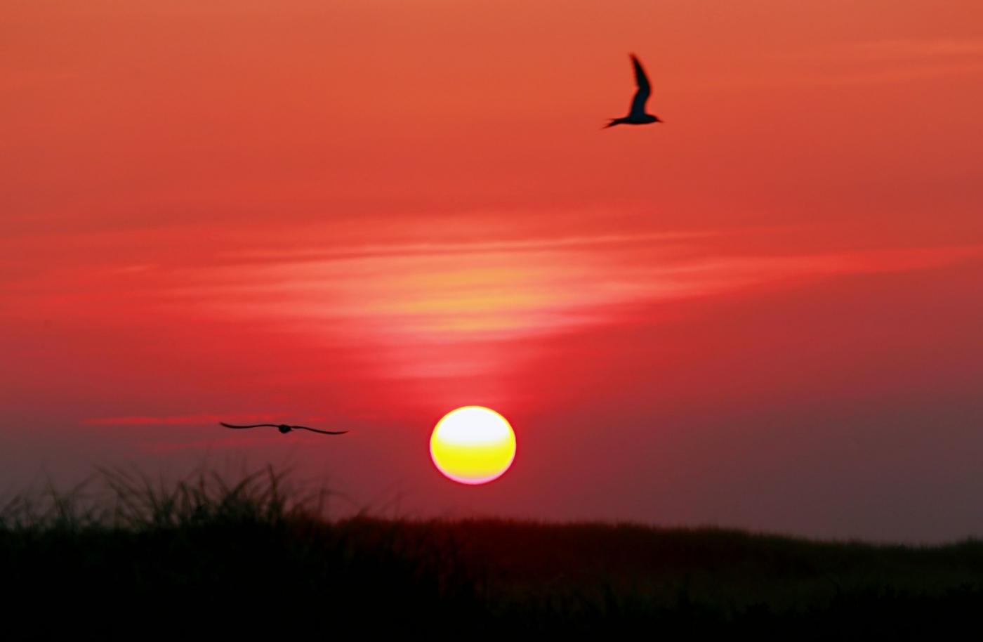 【田螺摄影】写长沙滩的日出日落_图1-5