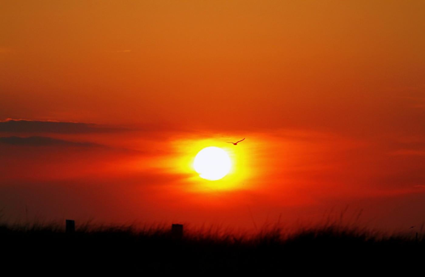 【田螺摄影】写长沙滩的日出日落_图1-8
