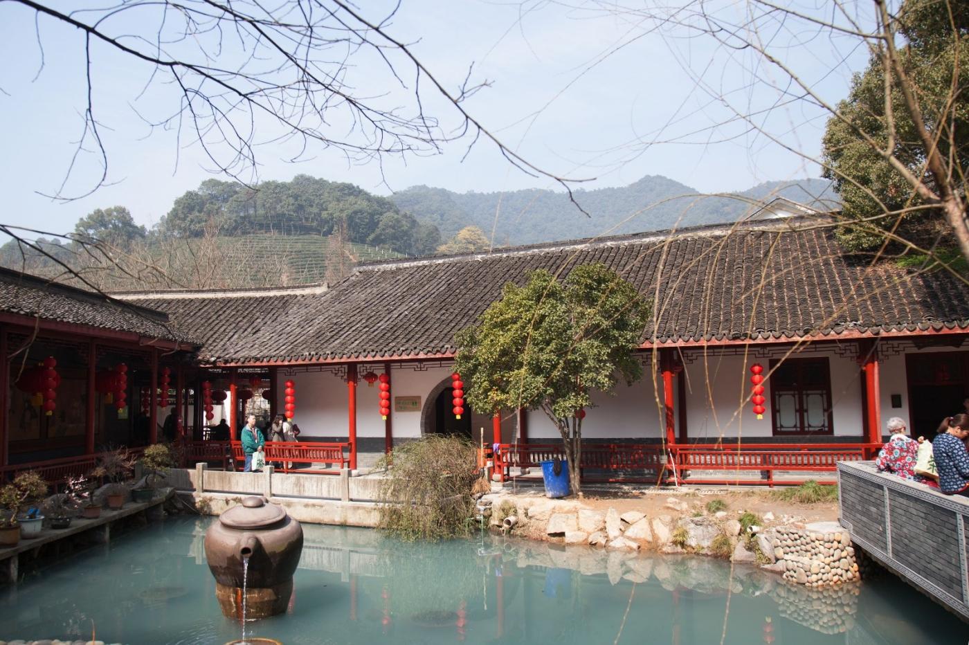 游杭州梅家坞茶场,品西湖龙井茶_图1-4