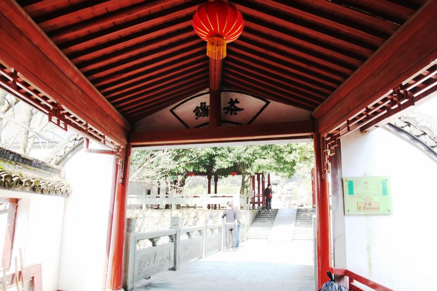 游杭州梅家坞茶场,品西湖龙井茶_图1-8