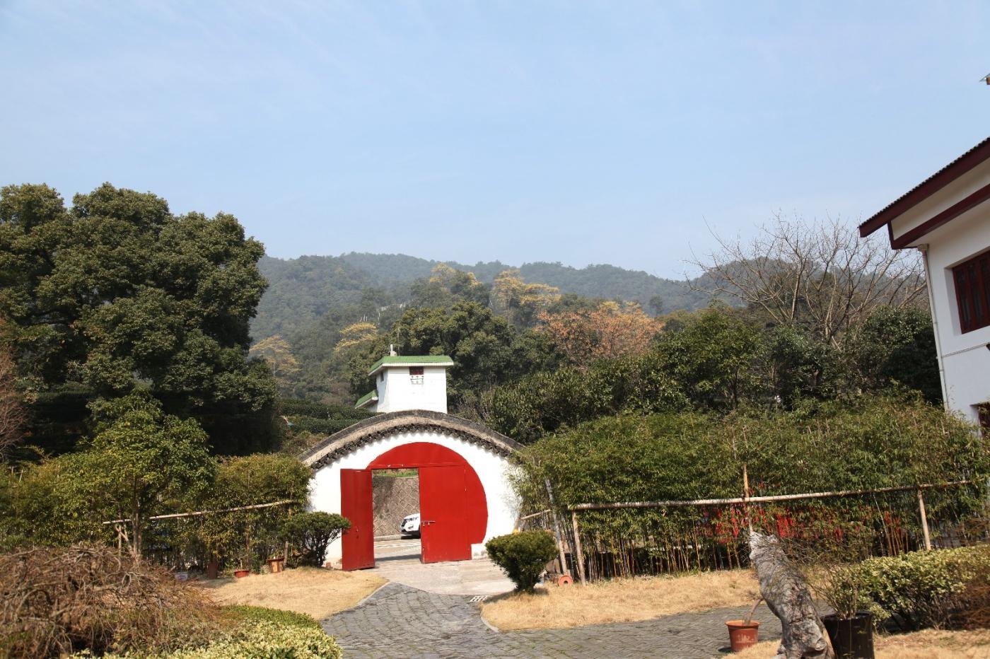 游杭州梅家坞茶场,品西湖龙井茶_图1-11