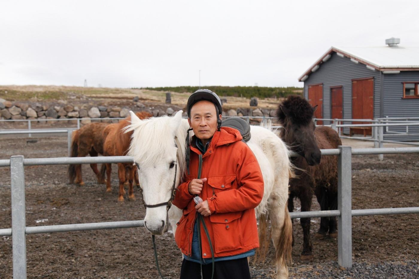 游冰岛马场,策马扬鞭....._图1-6