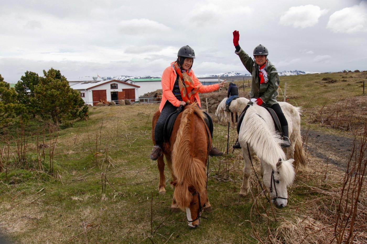 游冰岛马场,策马扬鞭....._图1-11