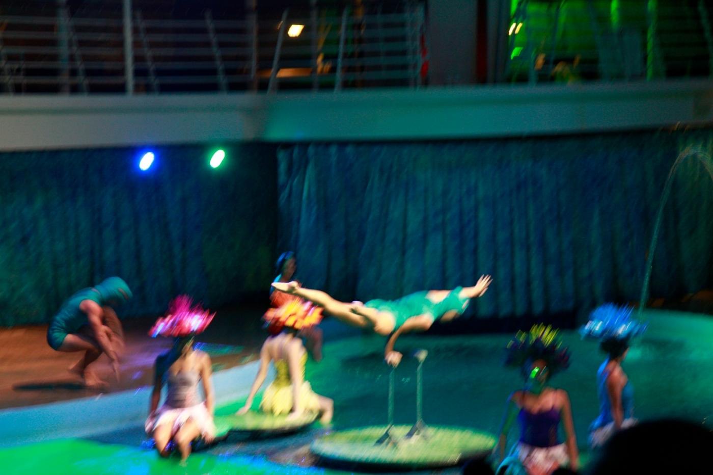 在海洋绿洲号游轮观看高台跳水秀_图1-19
