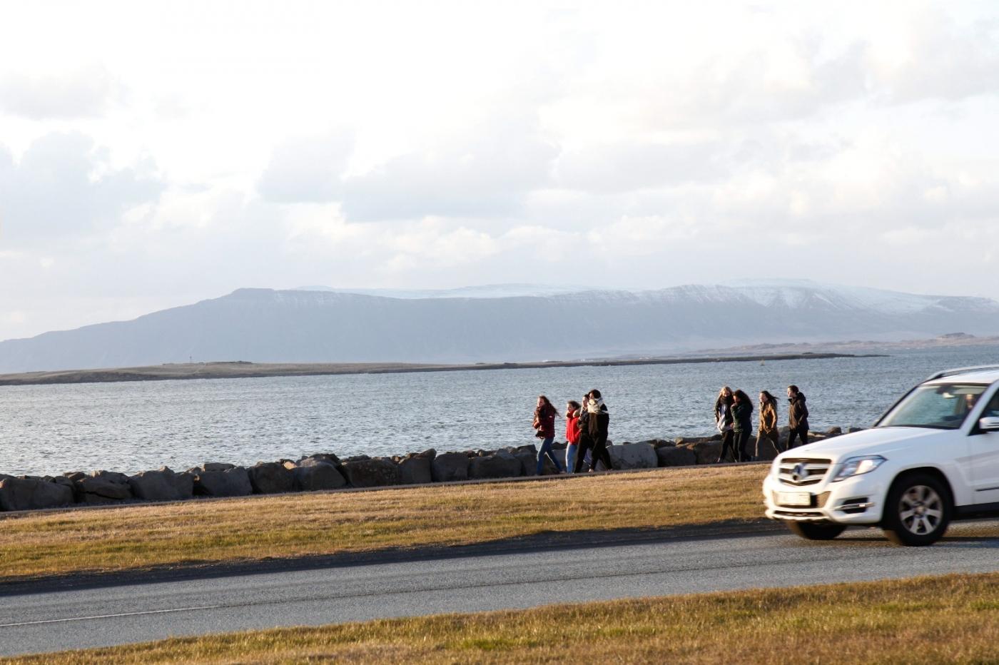 冰岛海滩风景_图1-23