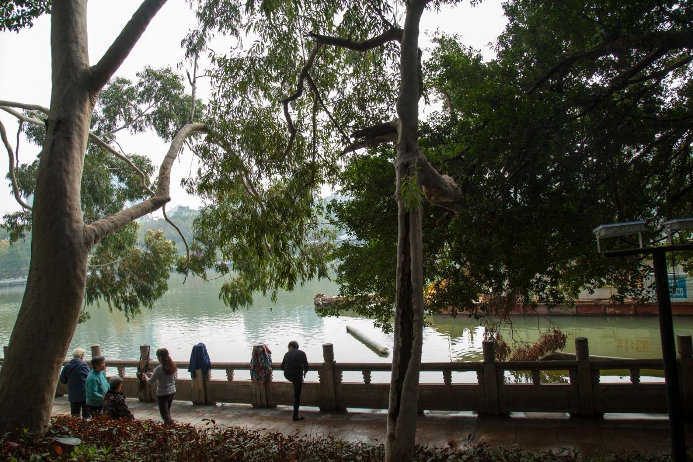 福州西湖公园,美景如画,赏心悦目,流连忘返_图1-11