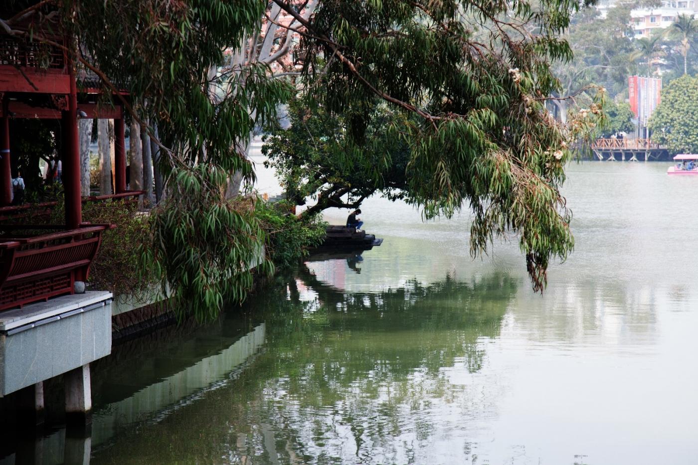 福州西湖公园,美景如画,赏心悦目,流连忘返_图1-20