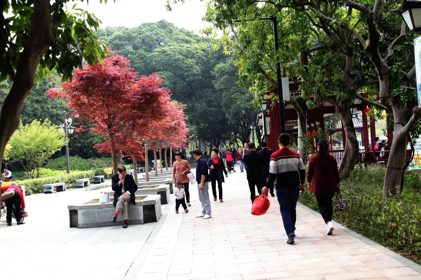 福州西湖公园,美景如画,赏心悦目,流连忘返_图1-26