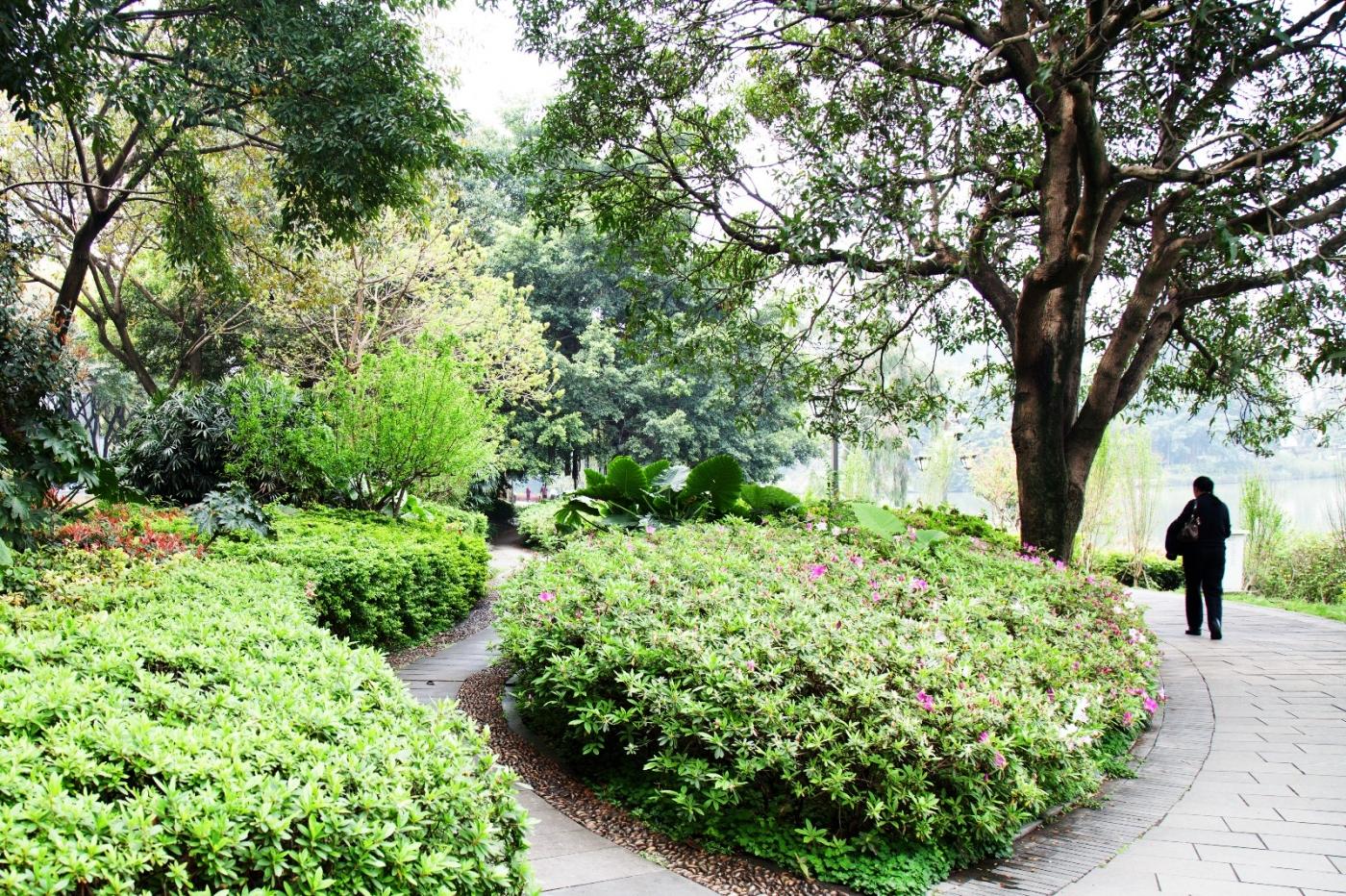 福州西湖公园,美景如画,赏心悦目,流连忘返_图1-32