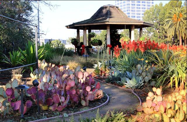 罗杰花园-落杉矶的小精灵_图1-5