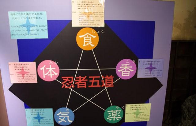 伊贺上野忍者的秘密_图1-16