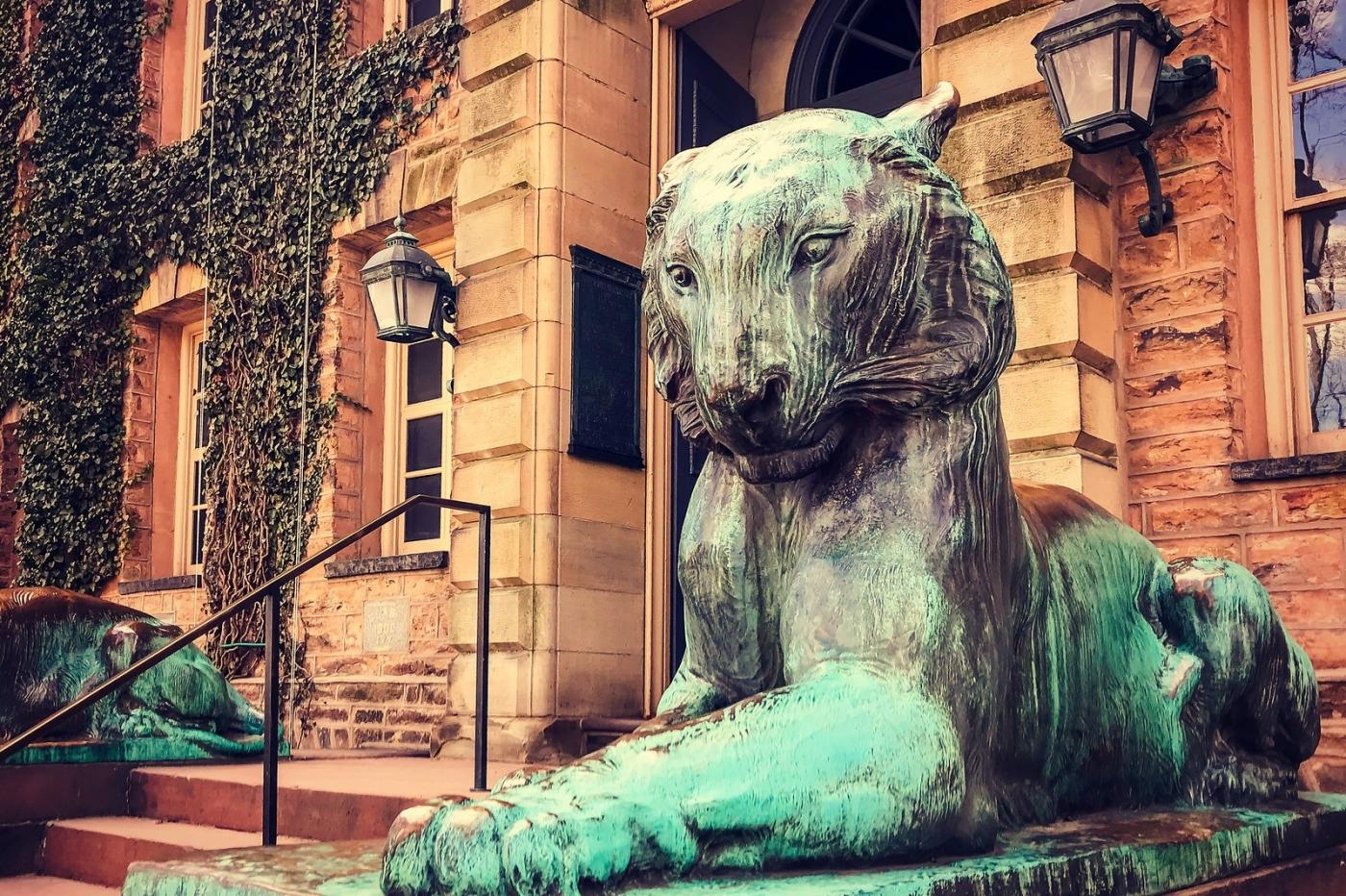 普林斯顿大学,来自手机里的影像_图1-1