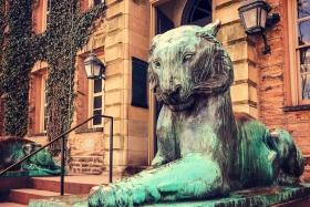普林斯顿大学,来自手机里的影像
