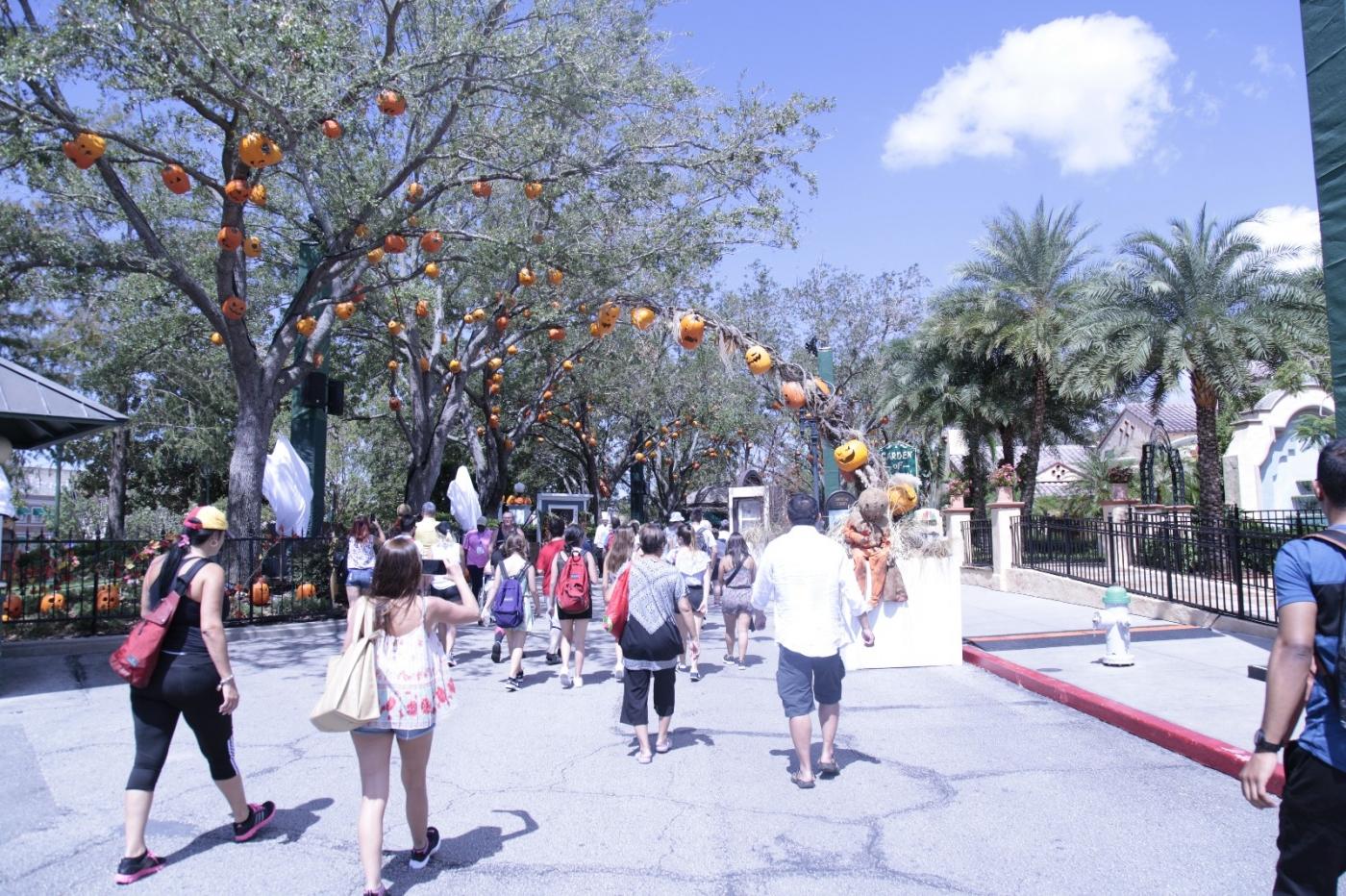游佛罗里达迪士尼乐园_图1-7