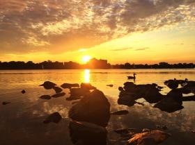 夕阳映红了可乐娜公园