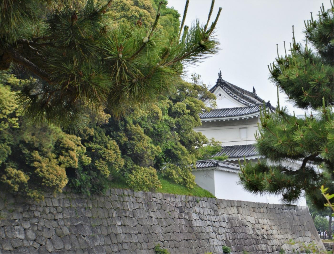 日本横线 —— 关西自由行2 京都二条城_图1-1