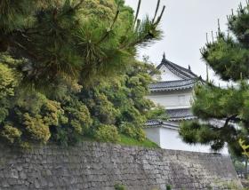 日本横线 —— 关西自由行2 京都二条城