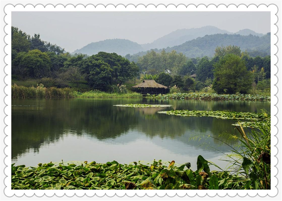 杨公堤景区_图1-2