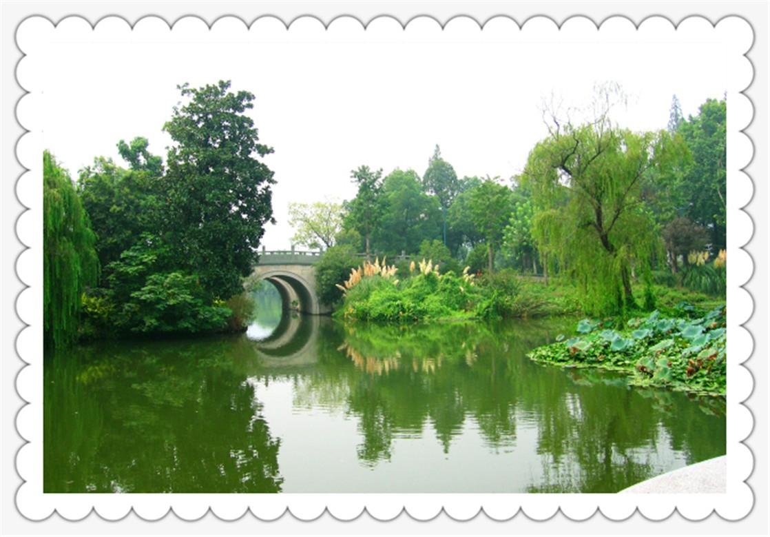 杨公堤景区_图1-3
