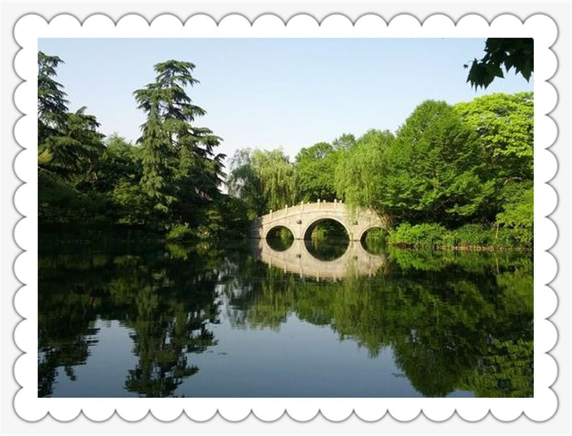 杨公堤景区_图1-5