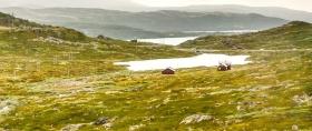 北欧风光,夏日里的冰雪大地