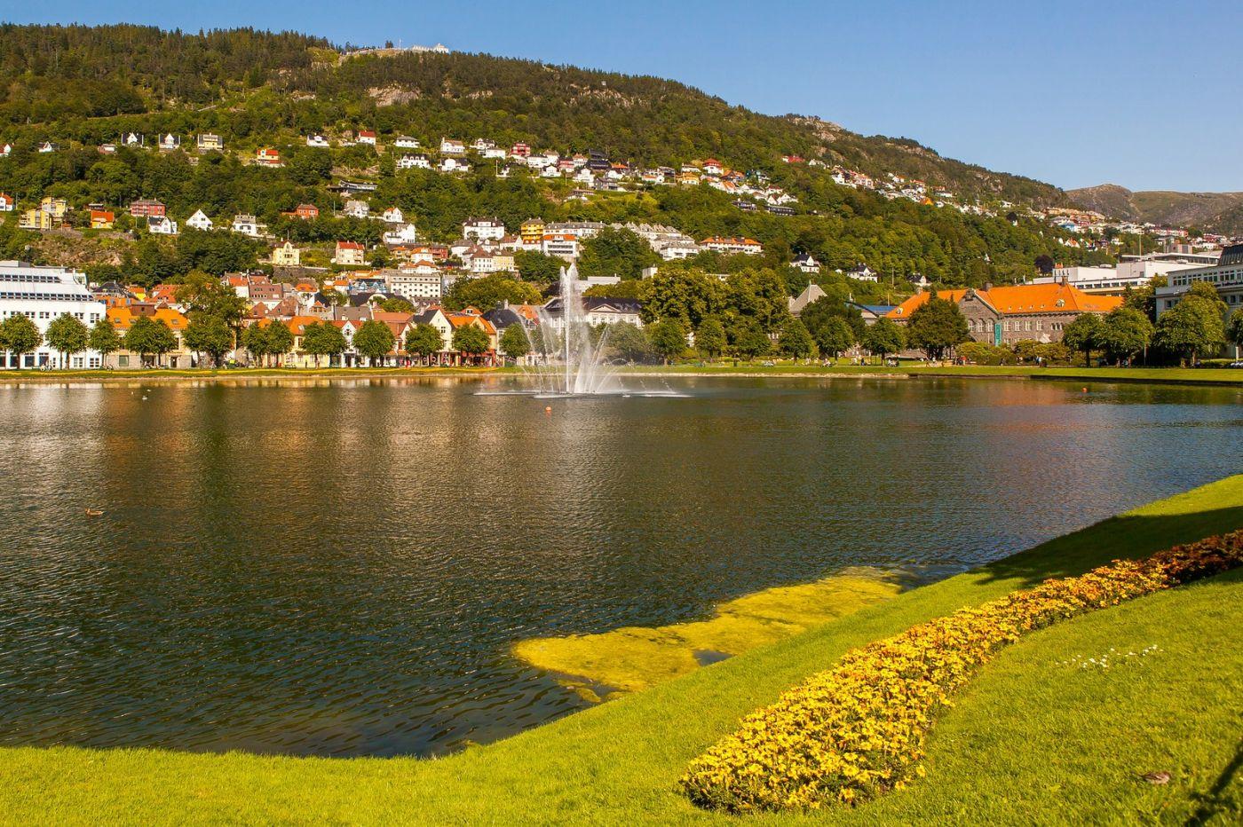 挪威卑尔根市,路边的精致花亭_图1-4