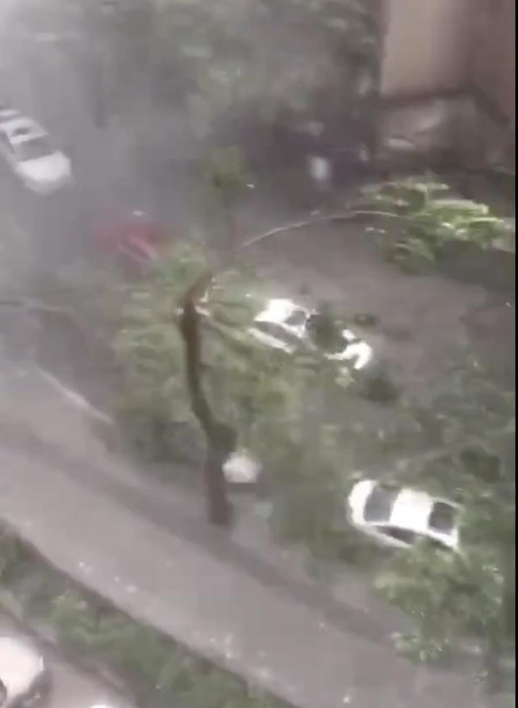 惨不忍睹:狂风袭击下的美国和香港_图1-7
