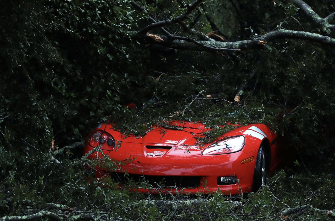 惨不忍睹:狂风袭击下的美国和香港_图1-11