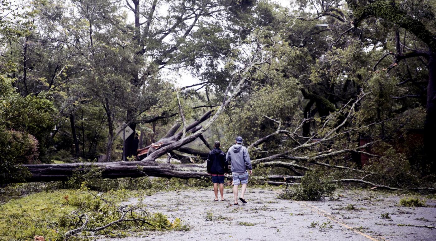 惨不忍睹:狂风袭击下的美国和香港_图1-17