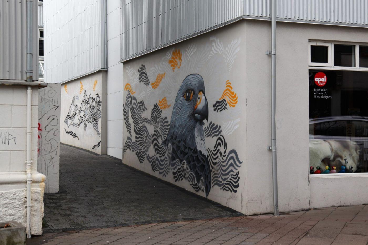 冰岛街拍_图1-6