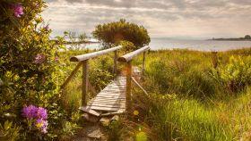 苏格兰马尔岛,海边的奇遇